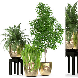 3D plants 235 model