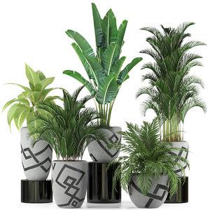 plants 236 3D