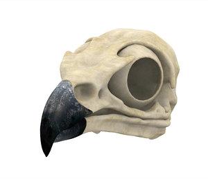3D griffin skull model