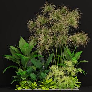 plants 241 3D model