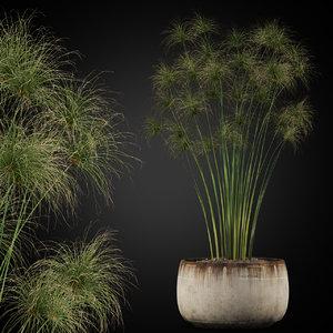 plants 257 model