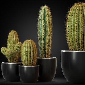 plants 258 3D model
