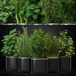 3D plants 261