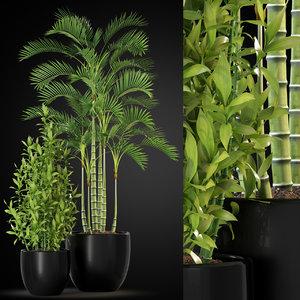 plants 263 3D