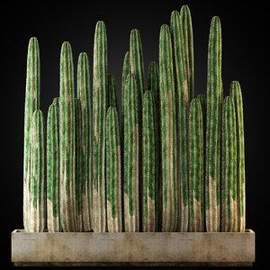 3D plants 266