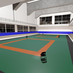 3D judo competition venue