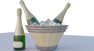 champagne bottle model