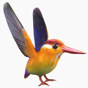 3D model bird colorful oriental dwarf