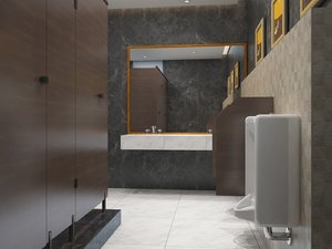 public bathroom interiors 3D model