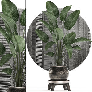3D tropical plants interior pot