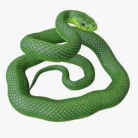 Green Mamba Rigged
