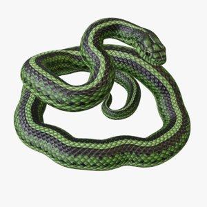 3D rigged green snake s model