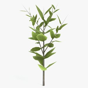 3D stylized small tree model