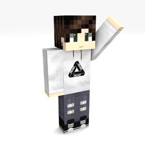 3D minecraft boy