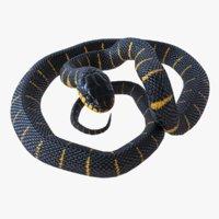 Mangrove Snake Rigged
