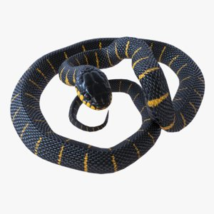 rigged mangrove snake reptile model
