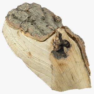wooden log 04 3D model