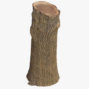 3D tree trunk 02 model