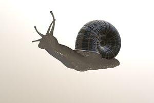 3D snail blender eevee