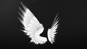 angel wings model