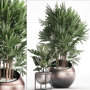 houseplants plants 3D model