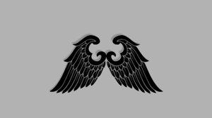 3D wings model