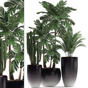 tropical plants interior 3D