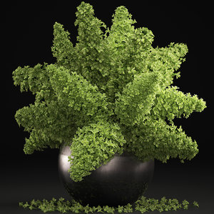 3D green lilac vase bouquet model
