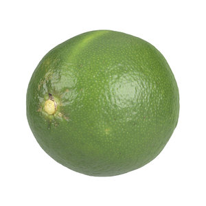 3D photorealistic scanned lime model