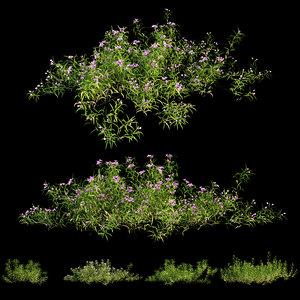 3D grass 01