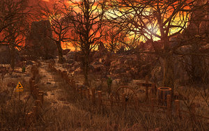 western forest sunset 3D