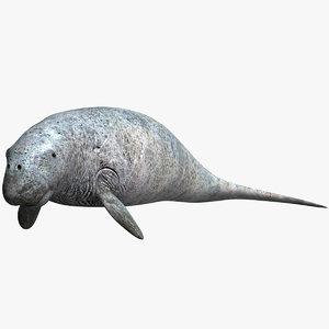 3ds max dugong shark