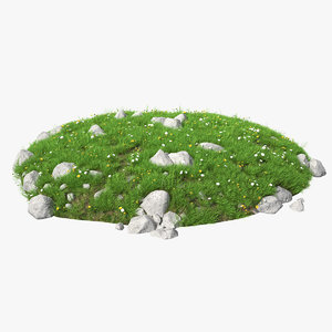 3D meadow blooming flowers model