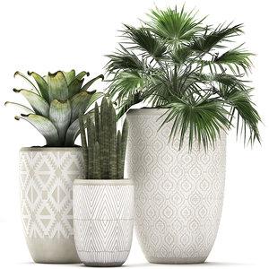 tropical plants flower pot 3D model