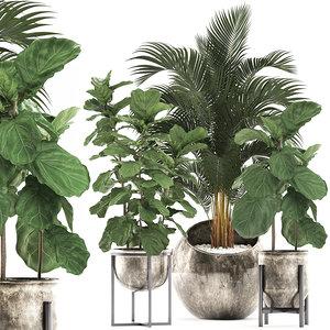 3D tropical plants interior decor model