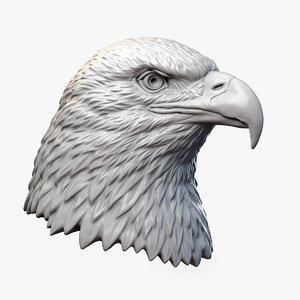 american bald eagle bird 3D model