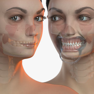 3D primary dentition mannequin v-ray model