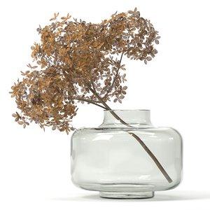 3D branch dried hydrangea model