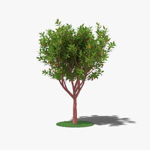strawberry tree 3D model