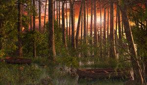swamp 3D
