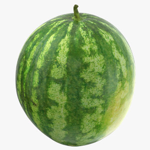 watermelon 03 3D model