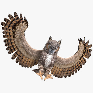 3D great horned owl rigged