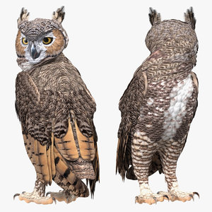great horned owl rigged 3D model