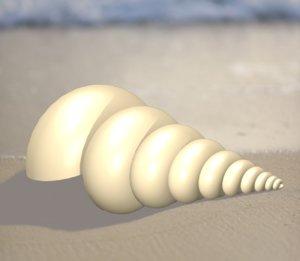 seashell sea shell animal 3D