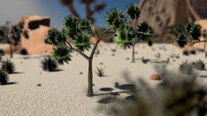 3D model joshua tree