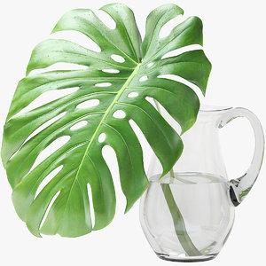 3D monstera leaf model