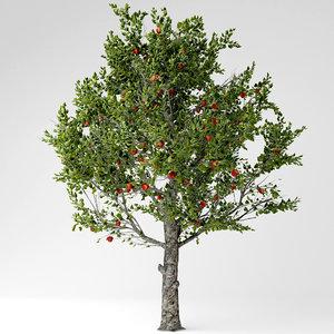 3D model apple tree