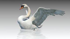 mute swan 3D model