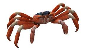 crab animal crustacean model