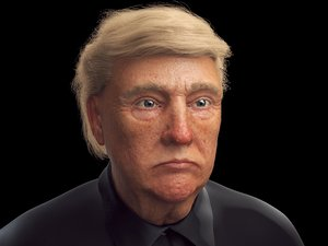 head donald trump 3D model